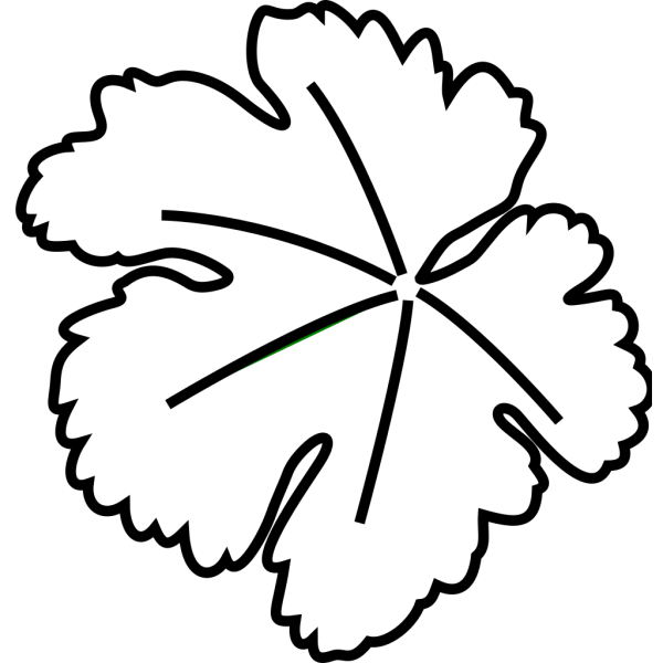 Leaf Border PNG icon