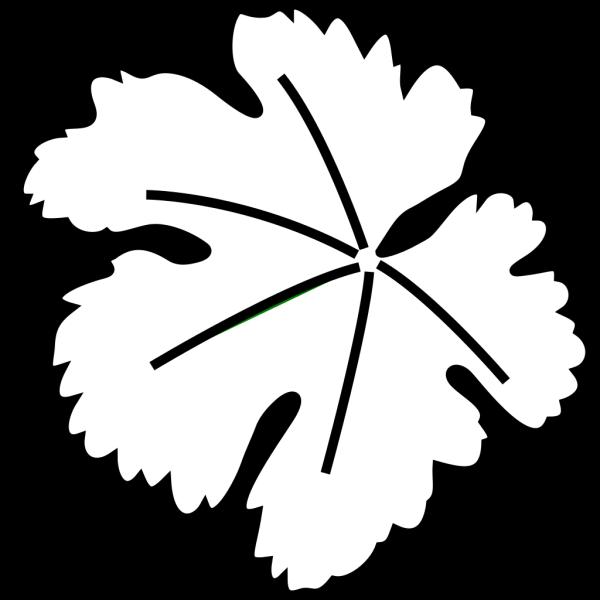 Leaf Border PNG Clip art