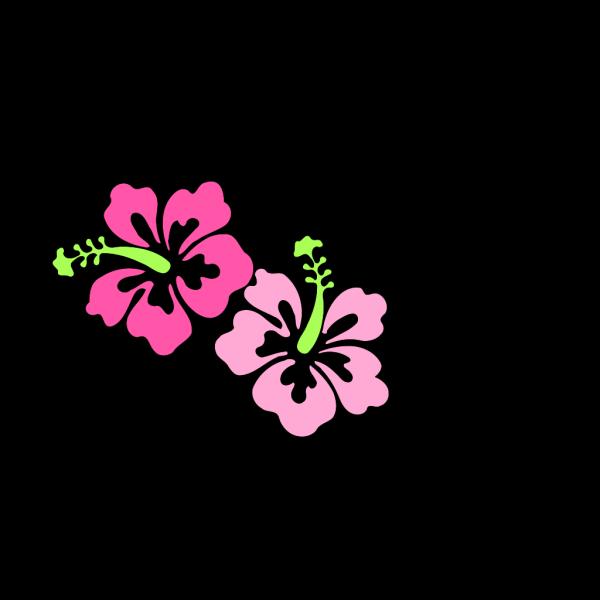 Hibiscus Hi PNG Clip art