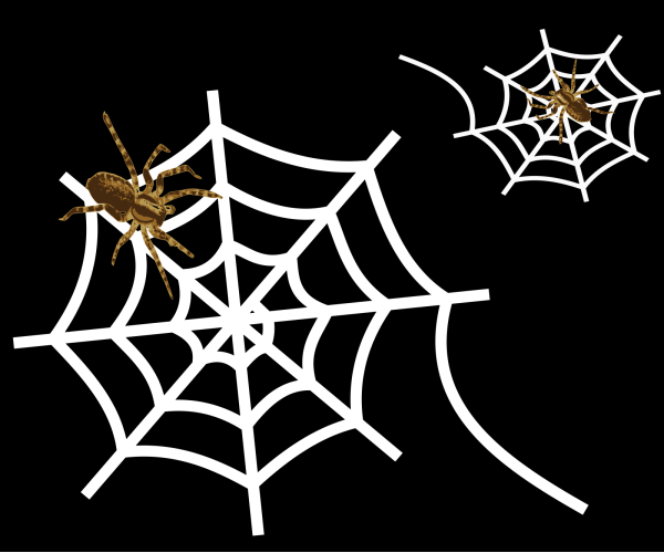 Spider PNG icons