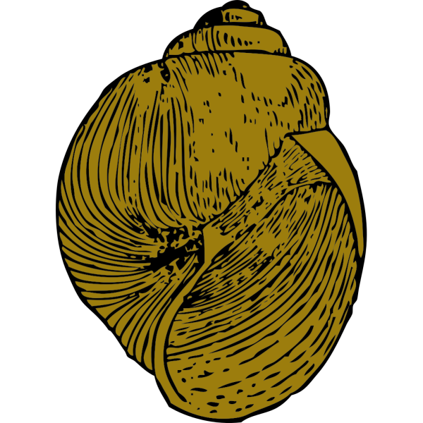 Snail Shell PNG icon