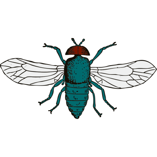 Fly PNG Clip art