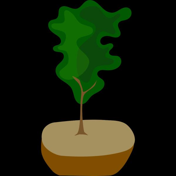 Tree In Pot PNG Clip art