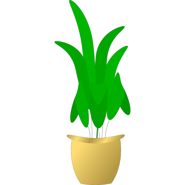 Plant In Pot PNG Clip art