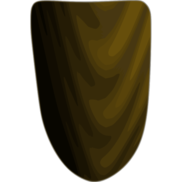 Wooden Shield PNG Clip art