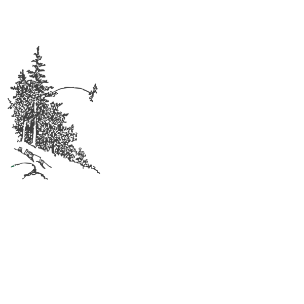Group Of Trees PNG Clip art