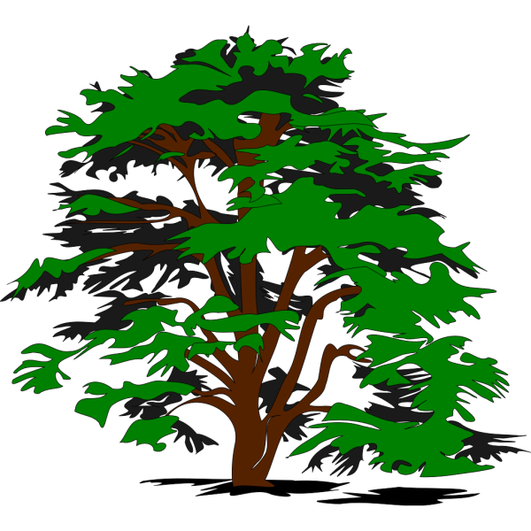 Simple Tree PNG Clip art