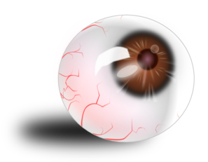 Eyeball Brown Bloodshot PNG images