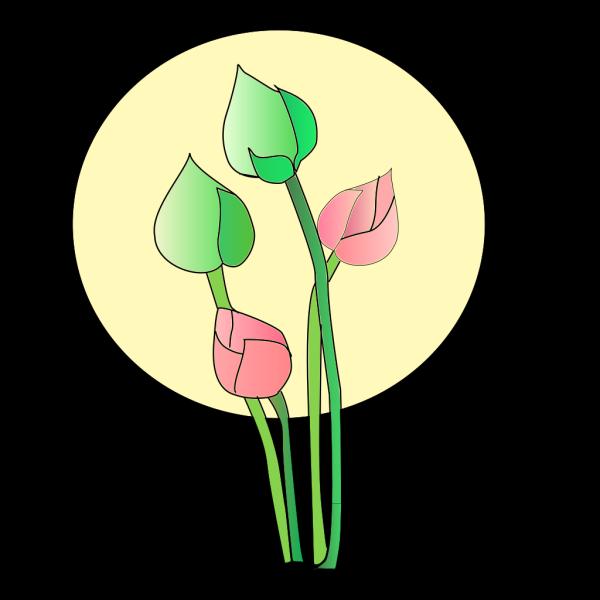 Teal Lotus Flower PNG Clip art