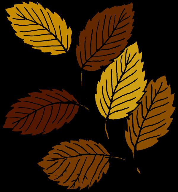 Brown Branch Leaves PNG Clip art