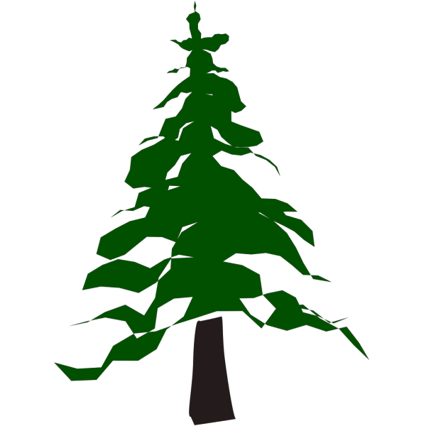 Pine Tree PNG clipart