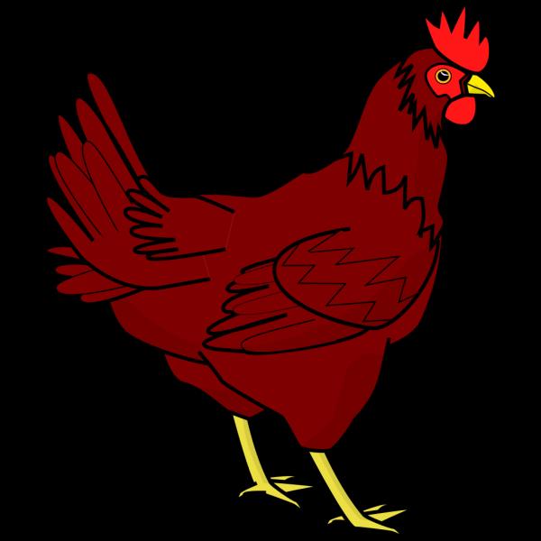Brown Hen PNG Clip art