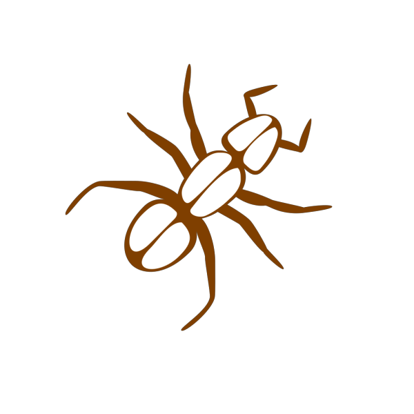 Ant Outline Brown PNG Clip art