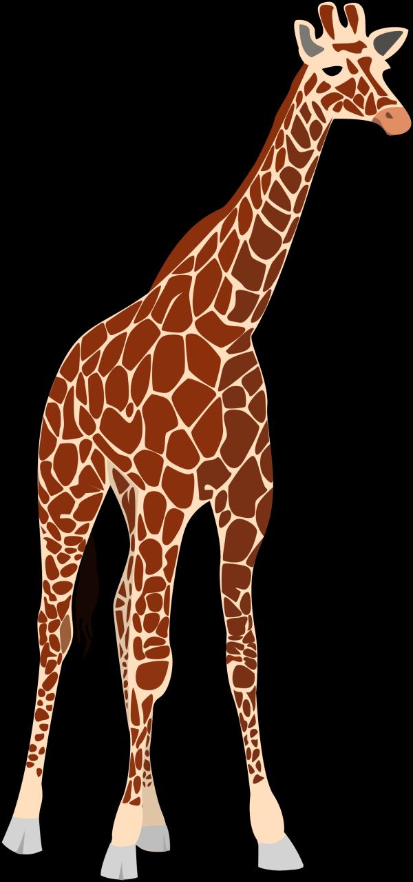 Giraffe Pink Brown PNG Clip art
