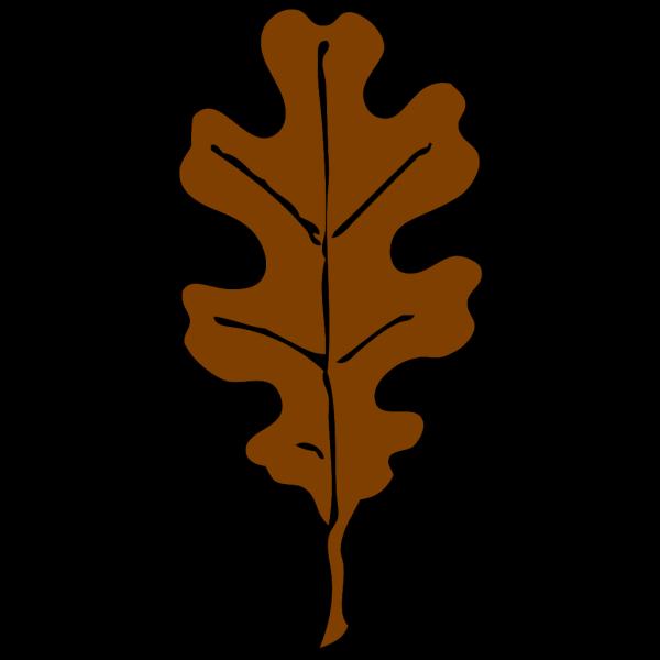 Brown Oak Leaf PNG Clip art