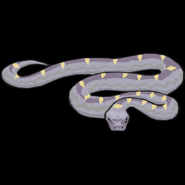 Slithering Snake Art PNG Clip art