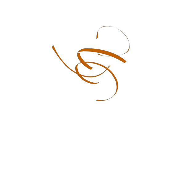 Brown Swirl Lg PNG Clip art