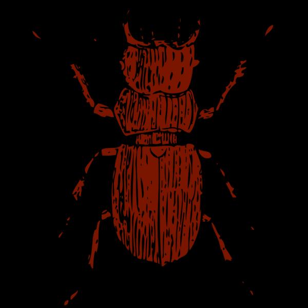 Brown Stag Beetle PNG Clip art