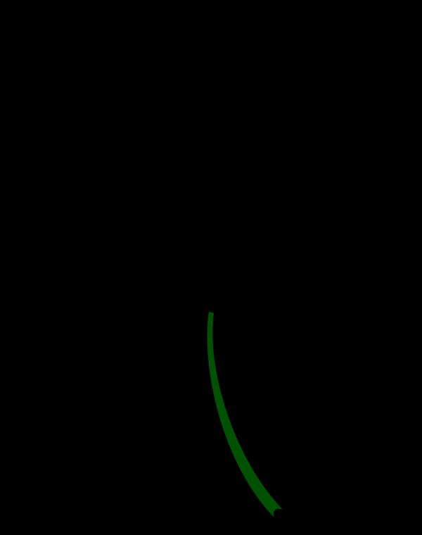 Leaf Decoration PNG Clip art