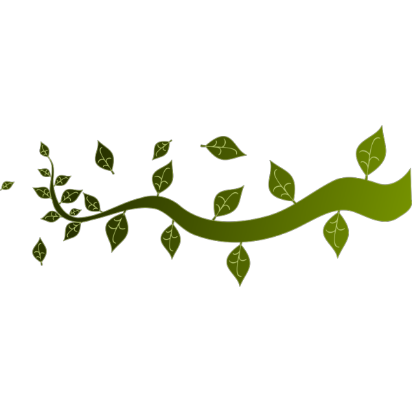 Tree Branch PNG Clip art