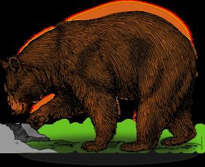 Detailed Brown Bear Art PNG Clip art