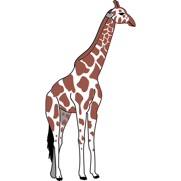 Brown And White Giraffe PNG Clip art