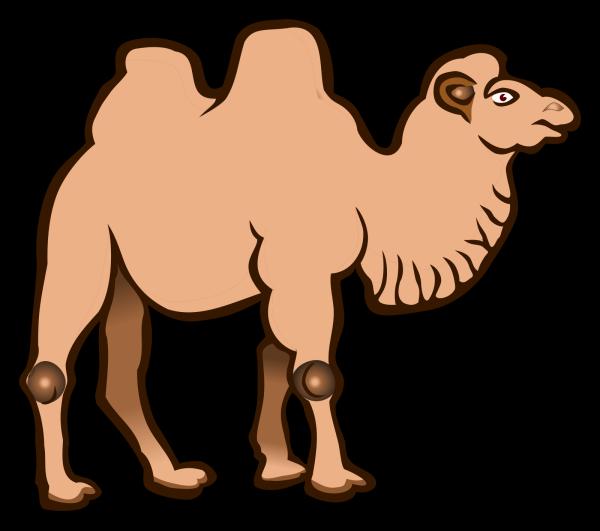 Brown Standing Camel PNG Clip art