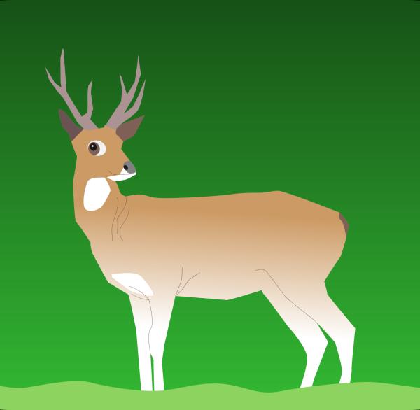 Brown Walking Deer PNG Clip art
