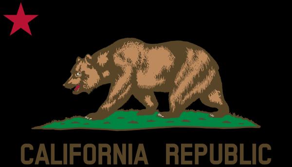 Bear PNG Clip art