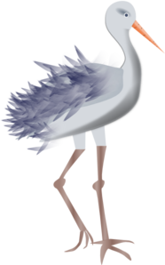 Bird With Legs PNG Clip art
