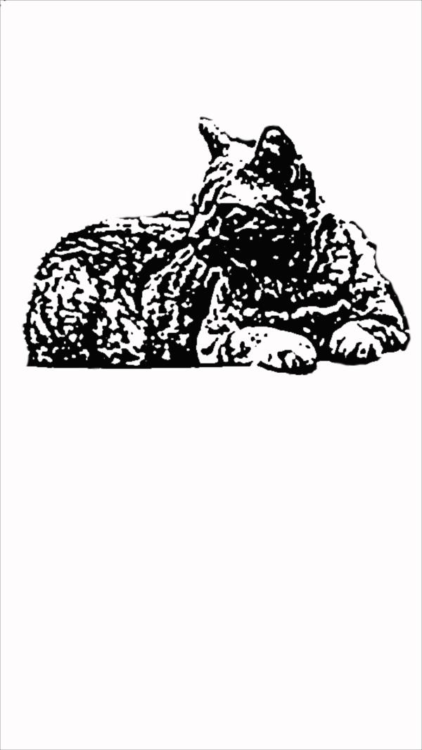 Cat PNG Clip art