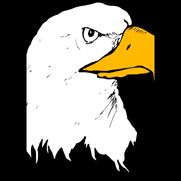 Eagle 22 PNG Clip art