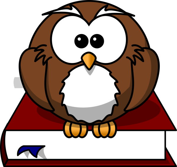 Brown Owl On Branch PNG clipart
