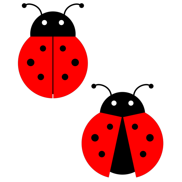 Brown Ladybugs  PNG Clip art