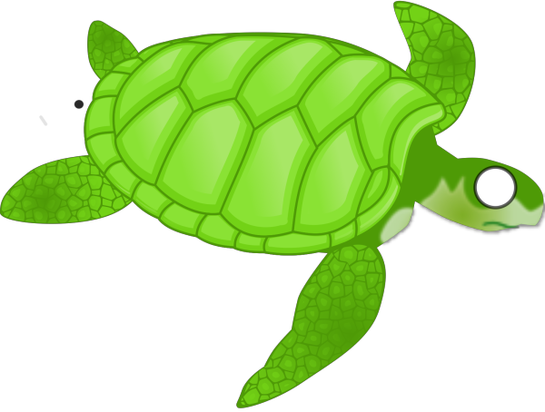Turtle PNG icons