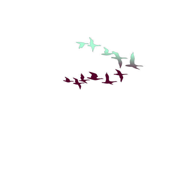 Gray Birds In Flight PNG images