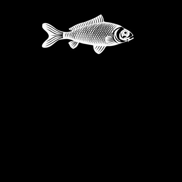 Fish 29 PNG Clip art