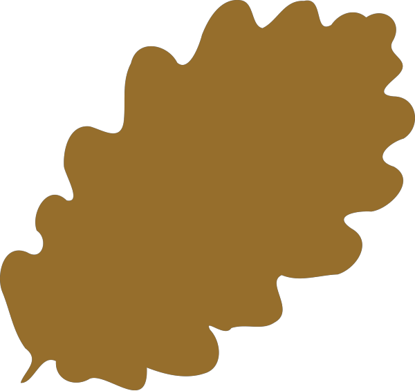 Brown Vine With Leaves PNG Clip art