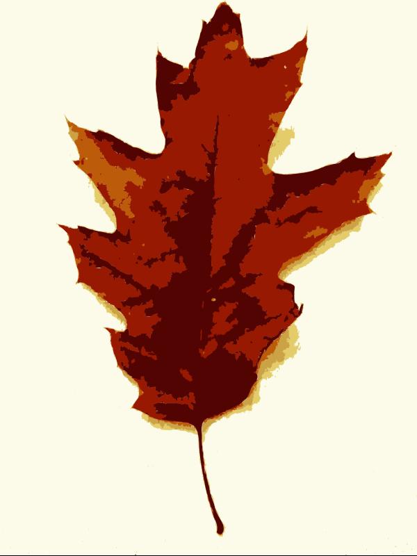 Fall PNG Clip art