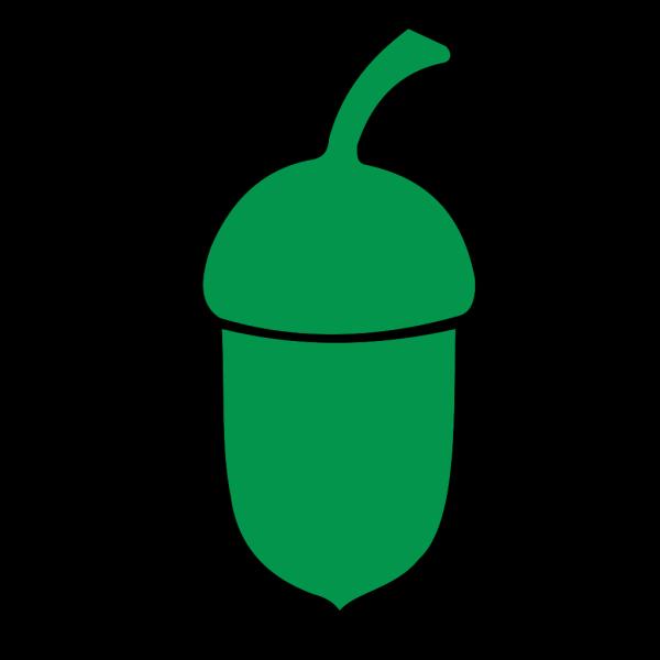 Acorns PNG icon