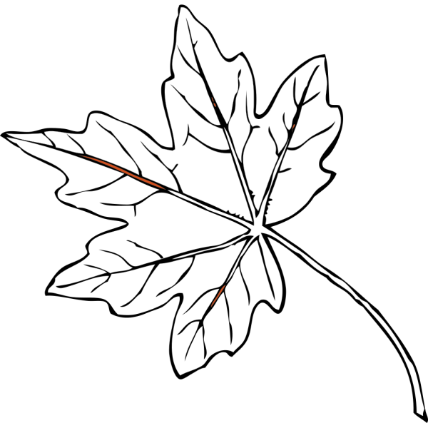Fall Maple Leaf PNG Clip art