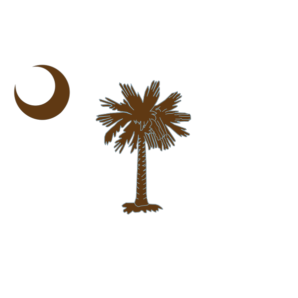 Sc Palmetto Tree PNG icons