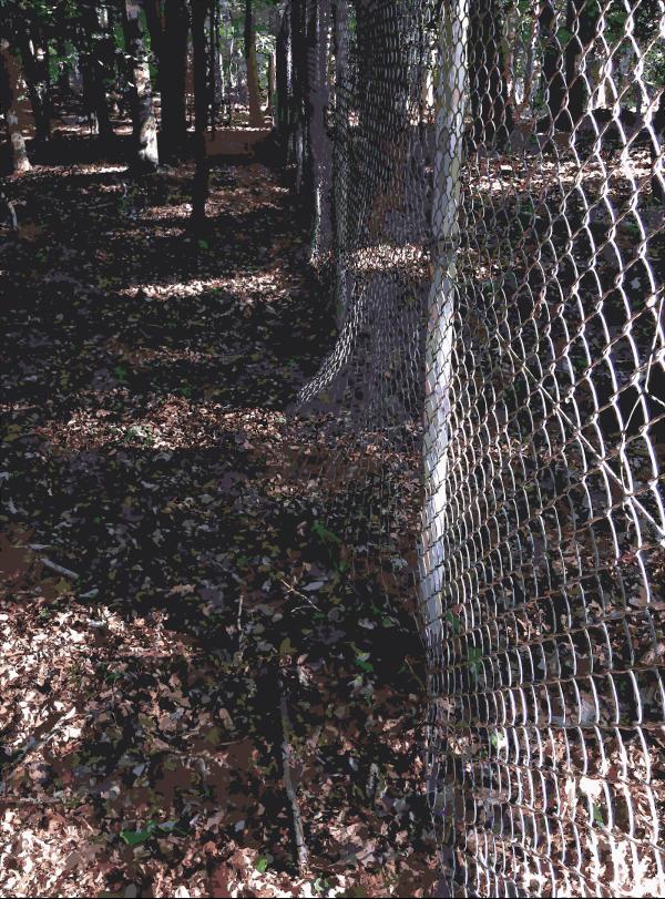 Fence PNG Clip art