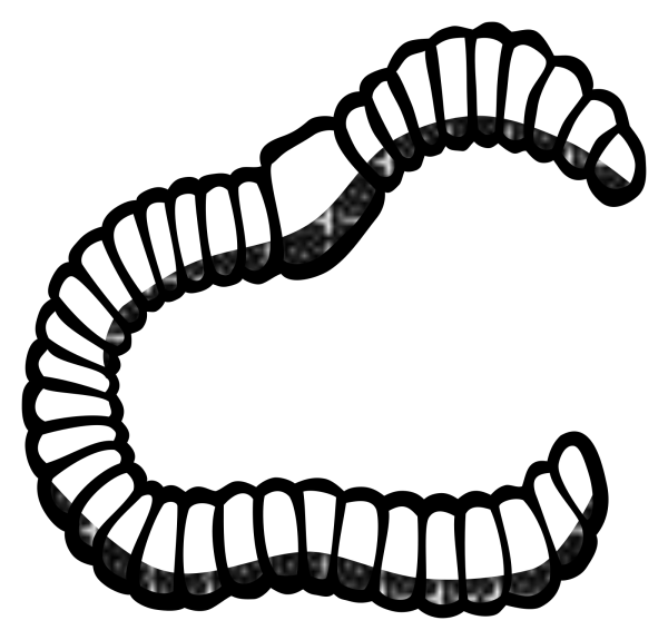 Brown Earth Worm PNG Clip art