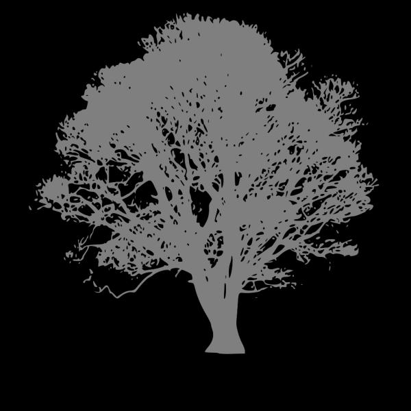 Brown Wedding Tree Rgb 65 36 23 PNG Clip art