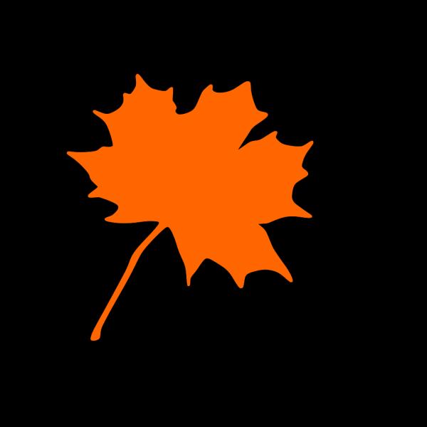 Orange Leaf, Brown Border PNG Clip art