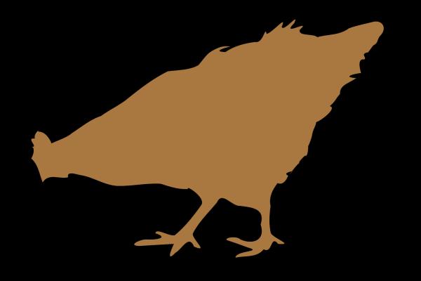 Brown Chicken PNG Clip art