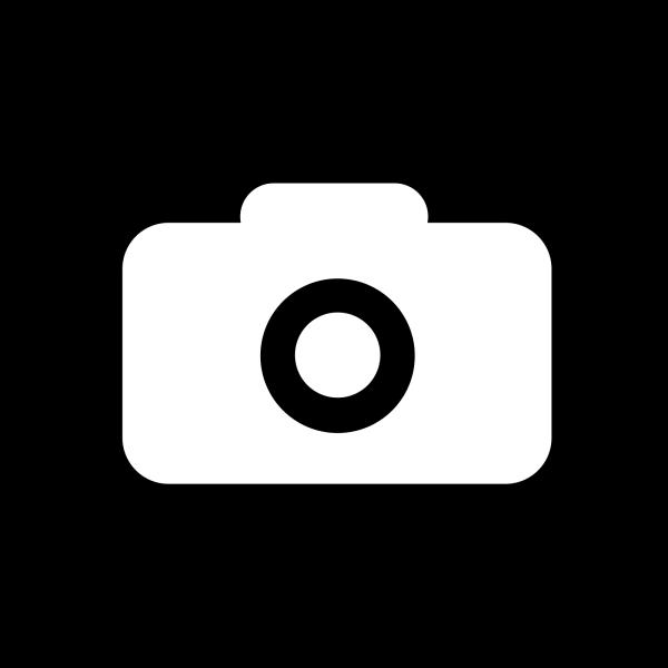 Camera Icon Brown PNG Clip art