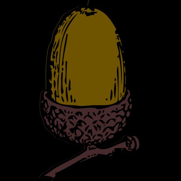 Acorn With Cap PNG Clip art