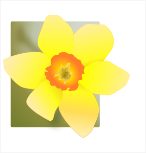 Daffodil 02 PNG Clip art